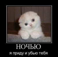 Роман Конфиденциально, Ижевск