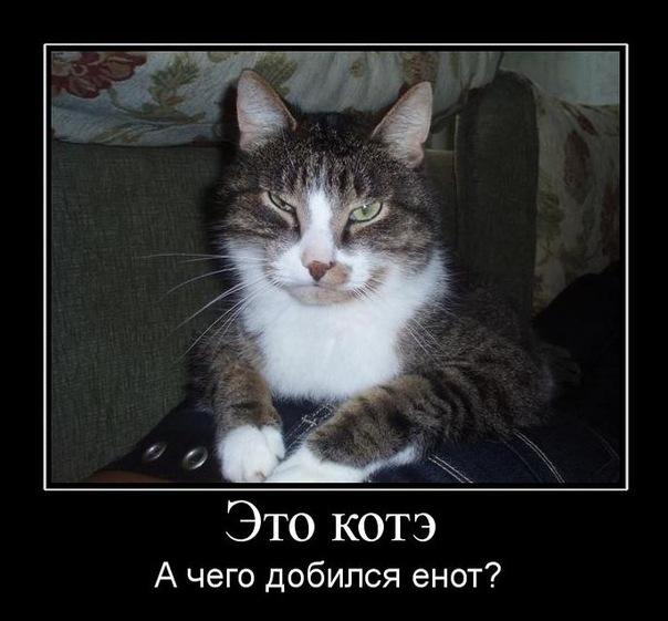 http://cs9226.userapi.com/u5716893/17476153/x_7f6d9c76.jpg