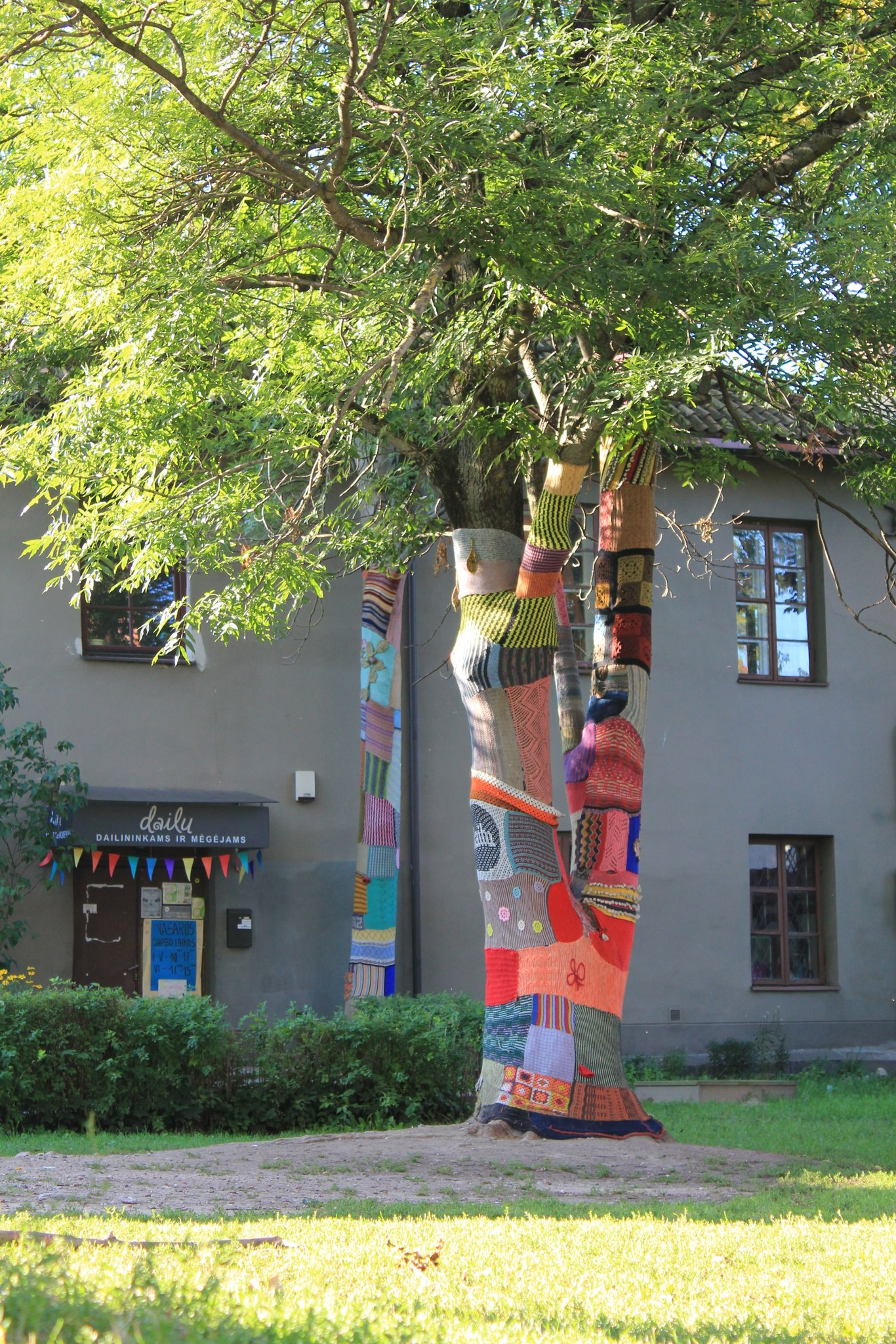Деревья вязанные. Европа. Литва