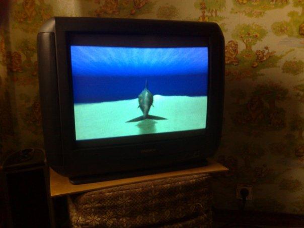 ecco the dolphin на PS1 1343f1c357e4f