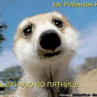 Дмитрий Климентьев, 14 мая 1984, Санкт-Петербург, id54075616
