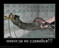 Кармен Газова, 13 апреля 1984, Чебоксары, id120385336