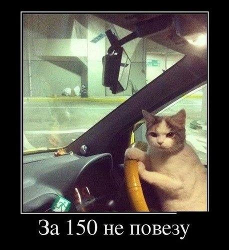 За 150 не повезу