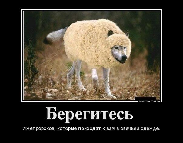 http://cs9256.vk.me/v9256796/477/ptFkdDezzSA.jpg