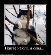 Keks :d, Новосибирск, id96138268