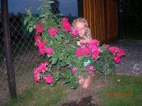Диана Жукова, 2 декабря 1993, Ивано-Франковск, id90776477