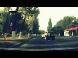 Курица на дорогах Алматы
