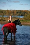 Аренда лошадей и пони на праздники!Фотосъёмка ,