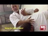One Minute Bunkai: Chinto (Kyan) #1