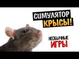 TheBrainDit (Олег Брейн) - Симулятор Крысы