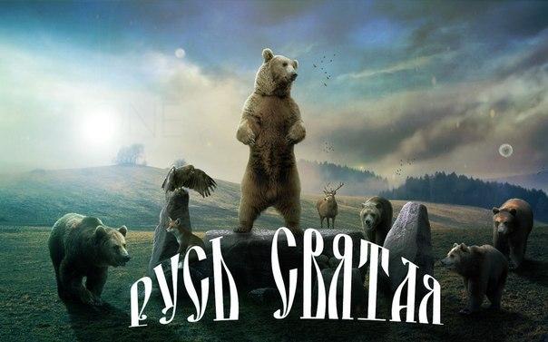 русский медведь картинки на телефон