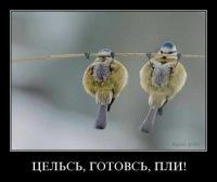 4rbhf4 4rbhf4, 24 мая , Донецк, id120134648