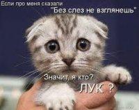 Егор Летов, 8 сентября 1992, Санкт-Петербург, id96634638