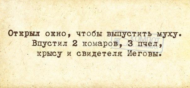 http://cs9291.vk.me/v9291510/608/6-5Z9DsPv4k.jpg