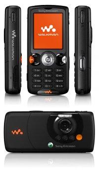 Корпус Sony Ericsson W810 +кнопки (без задней крышки), новый.