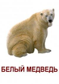 Міха Байкот девкам, 25 августа , Москва, id54474779