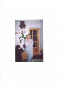 Надежда Никифорова, 2 января 1995, Белгород, id56643128