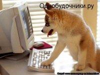 Елена Евстигнеева, 29 января , Нижний Новгород, id58671965