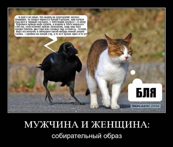 Забавные фотки и картинки X_65b37c8b
