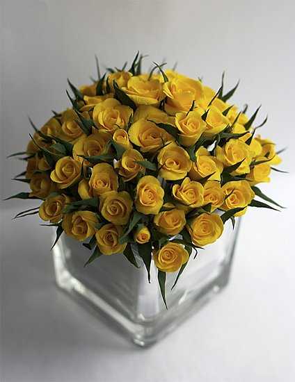 http://cs9296.vkontakte.ru/u2538097/107612629/x_550d9363.jpg