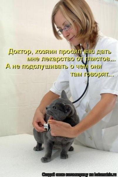 Котоматриця!)))) X_ada74dfd