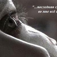 Мария Швед, 16 октября , Барановичи, id52877139
