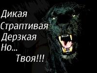 Картинка пантера с надписями