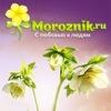 Сообщество сайта Moroznik.ru