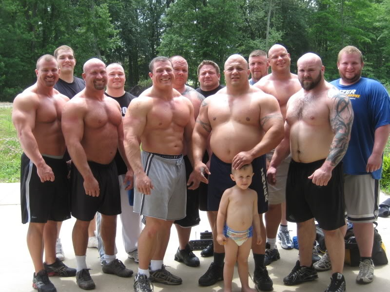 12 body builders v silverback gorilla   page 65   other
