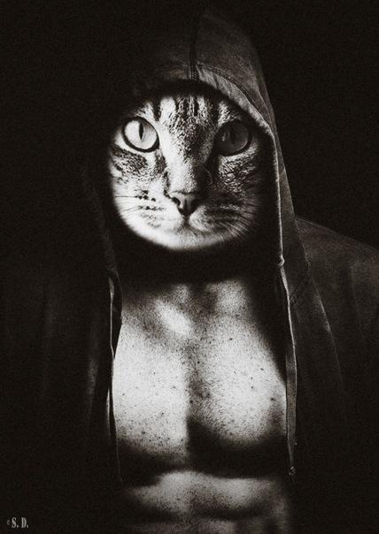 пацан с головой кота