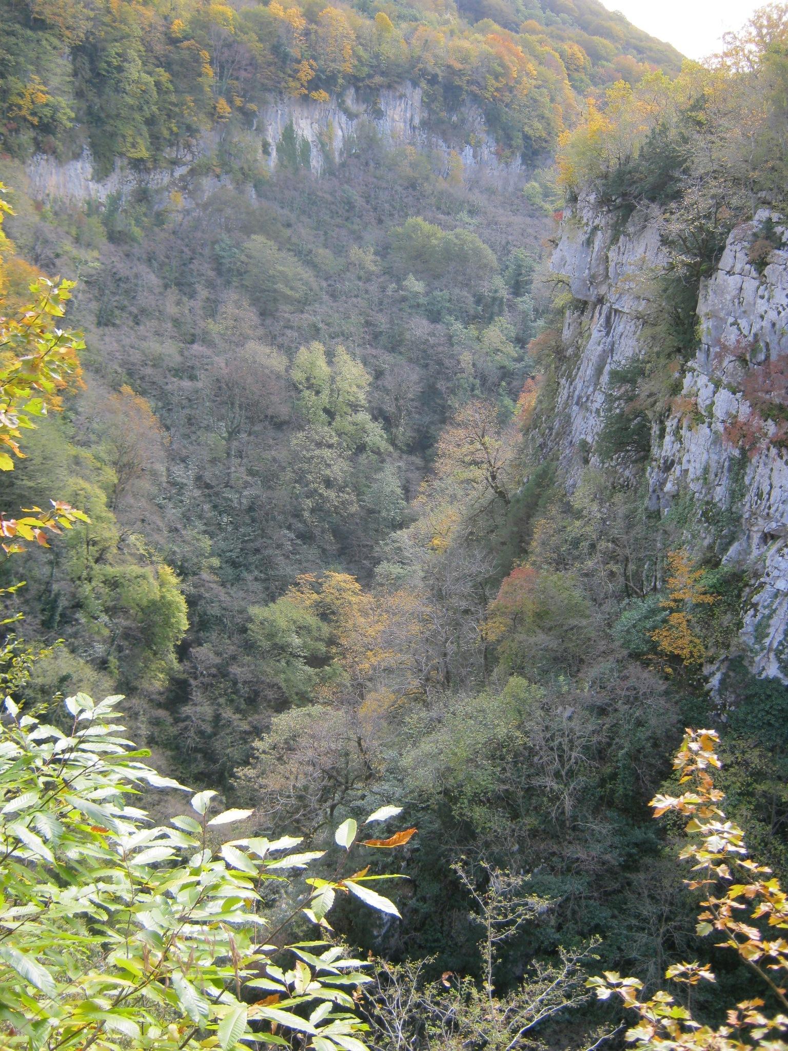 Широкая часть каньона Окаце.