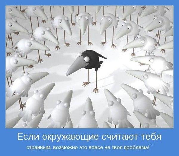 http://cs9313.vk.me/v9313796/86d/9X9l9-G1Q-Y.jpg