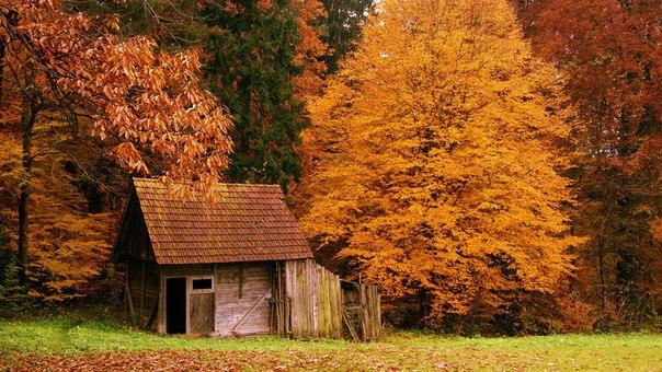Осень по праву можно назвать