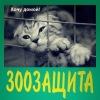 """Приют для животных """"Зоозащита +""""(Серпухов)"""