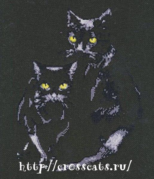 Скачать схему Черные кошки