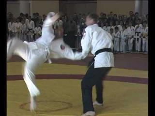 Jiu. Jitsu. Ju. Jutsu. Джиу джитсу. Гранд мастер. Валерий Рожков.