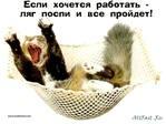 Дима Суханов, 17 июля 1996, Москва, id61204410