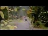 «Лепестки надежды» (2003): Трейлер / Официальная страница http://vk.com/kinopoisk