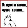 Werf Fbgt, 28 февраля , Киев, id95584783