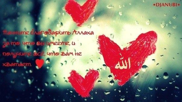 Аллах достаточен для того, кто уповал на Него, и кто обратился к Нему
