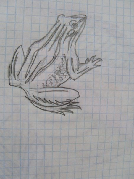 http://cs933.vkontakte.ru/u57819691/113999116/x_422cd877.jpg