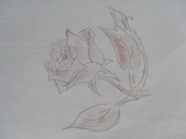 http://cs933.vkontakte.ru/u57819691/113999116/x_52892bdd.jpg