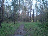 Vmklri Vlinyl, 2 марта , Калуга, id70070805