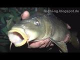 Рыбалка в Германии 27- Ночная рыбалка на карпа , иногда женщина на рыбалке не помеха