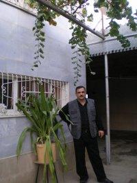 Hafiz Sardarl?, Кюрдамир