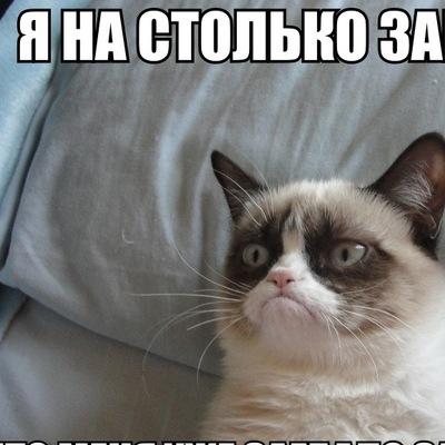 Андрей Болотов, 22 апреля 1986, Санкт-Петербург, id205576758