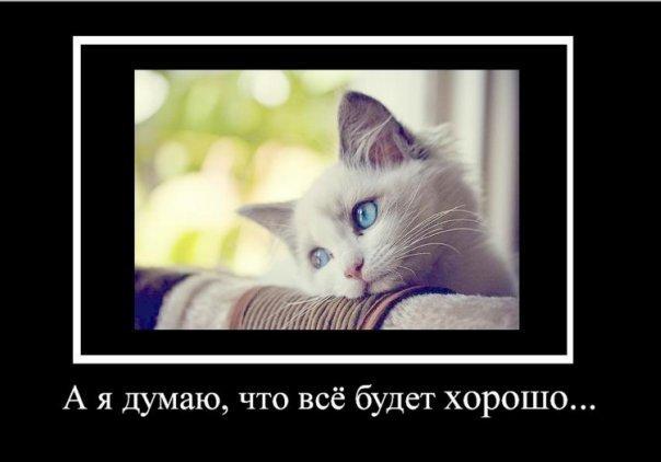 http://cs934.vkontakte.ru/u28094468/93327573/x_fac71930.jpg