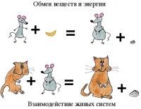 Crazy Миллионер, 17 марта , Новокузнецк, id103850157