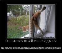 Qf Gaer, 15 мая 1996, Луганск, id117269897