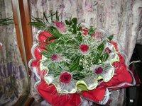 Елена Смирнова, 13 января , Санкт-Петербург, id68113665